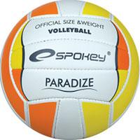 Bola de voleibol - Paradize
