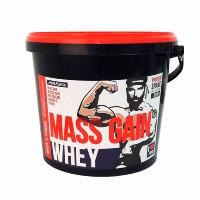 Whey Mass Gain - 3000g